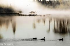 09-23-primeval-pond