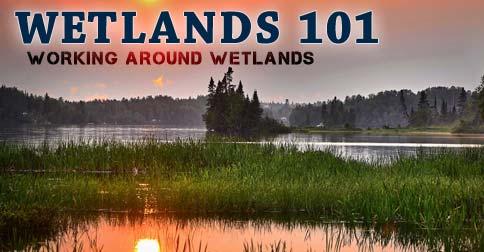 Wetlands 101 - Working Around Wetlands