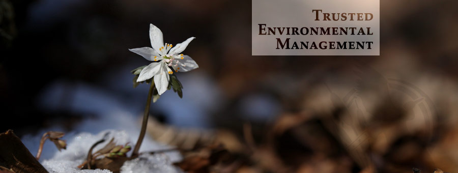 Blue Heron Trusted Environmental Management
