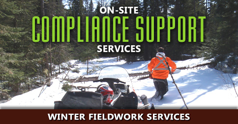 onsite-compliance-support-services-02