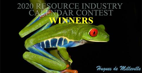 2020 Calendar Photo Contest Winners