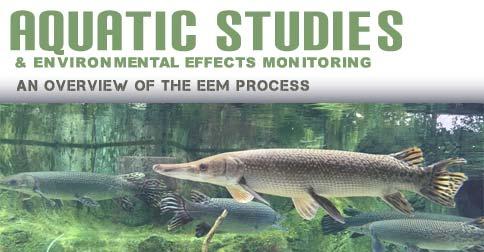 Aquatic Studies and Environmental Effects Monitoring