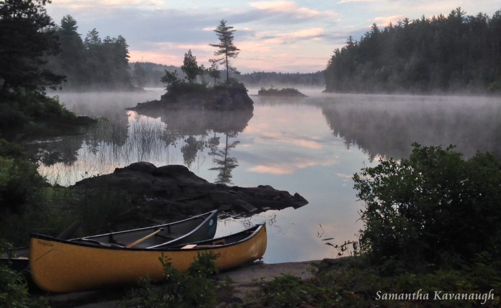 Early Morning Fog Rising by Samantha Kavanaugh