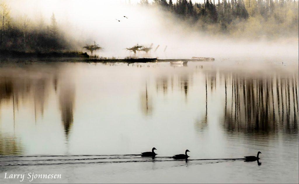 Primeval Pond by Larry Sjonnesen