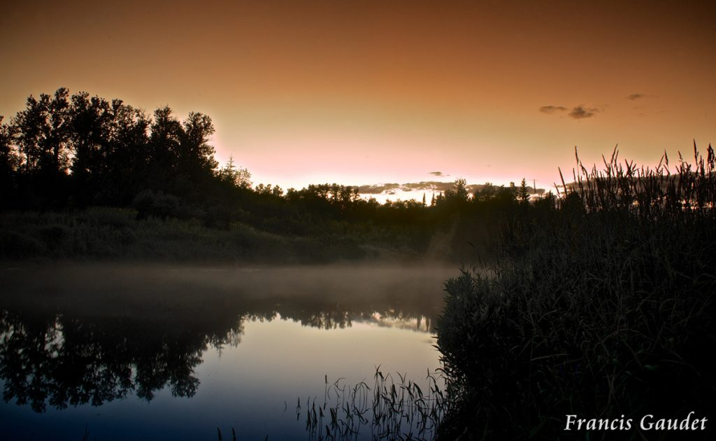 Mocha Sky by Francis Gaudet
